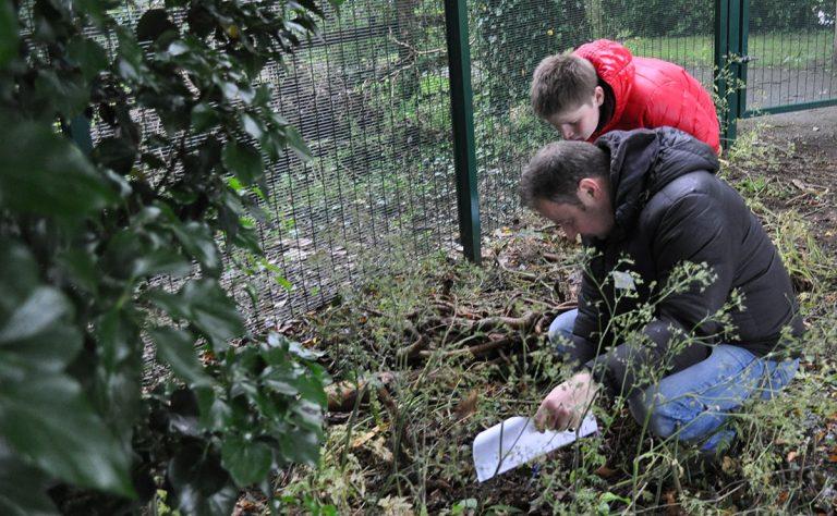 partnership gardening